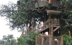 Beautiful Houses Around The World New 20 Amazing Fairytale Tree Houses Around The Globe