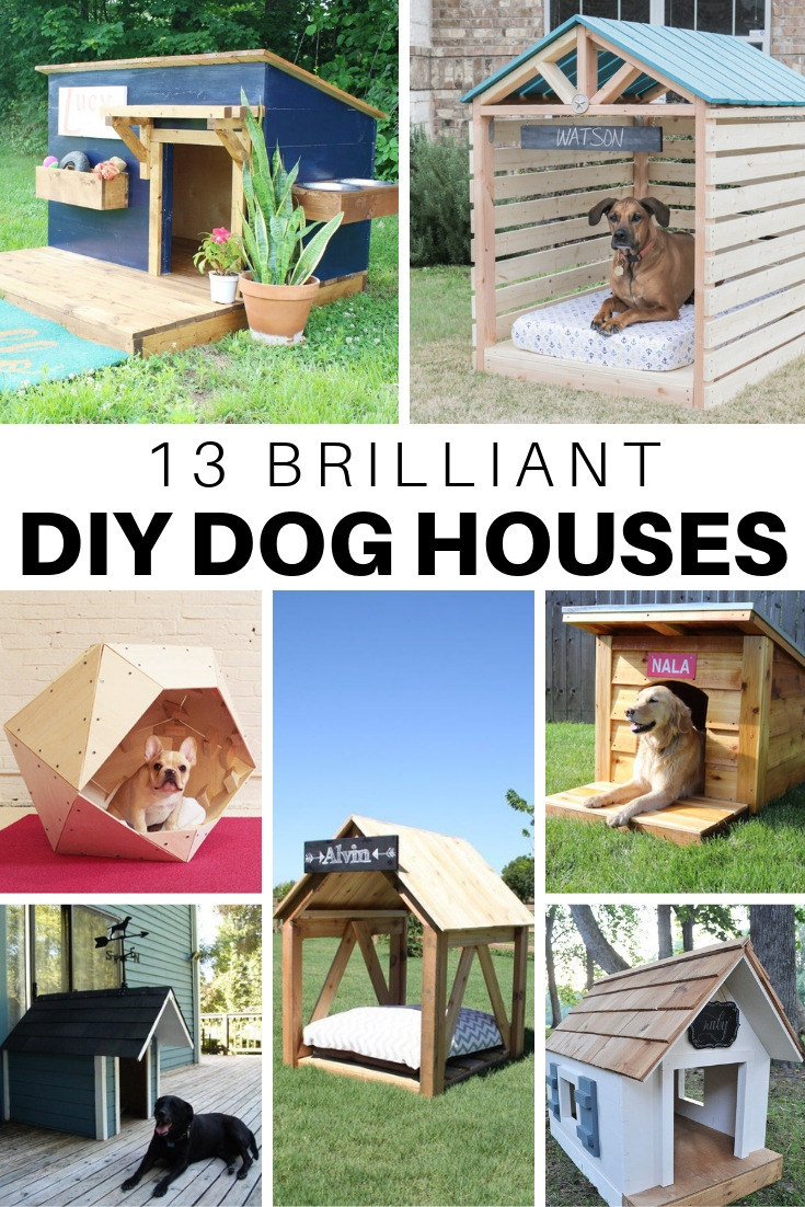 DIY Doghouses
