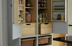 Food Storage Cabinet With Doors Fresh 20 Amazing Kitchen Pantry Ideas