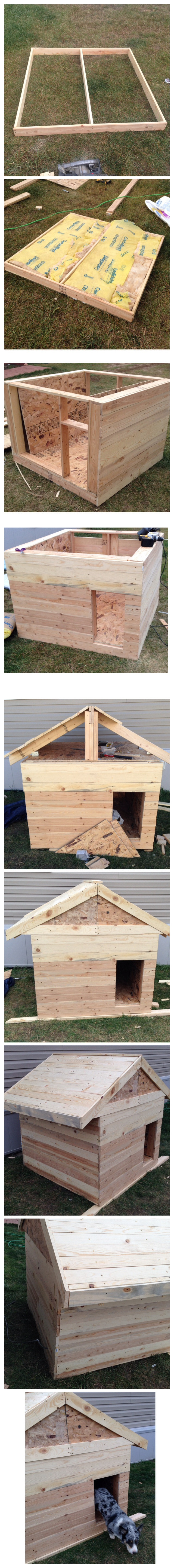 building a heated and insulated dog house