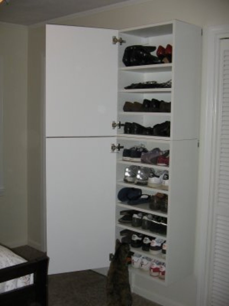 shoe storage cabinet with doors JPG