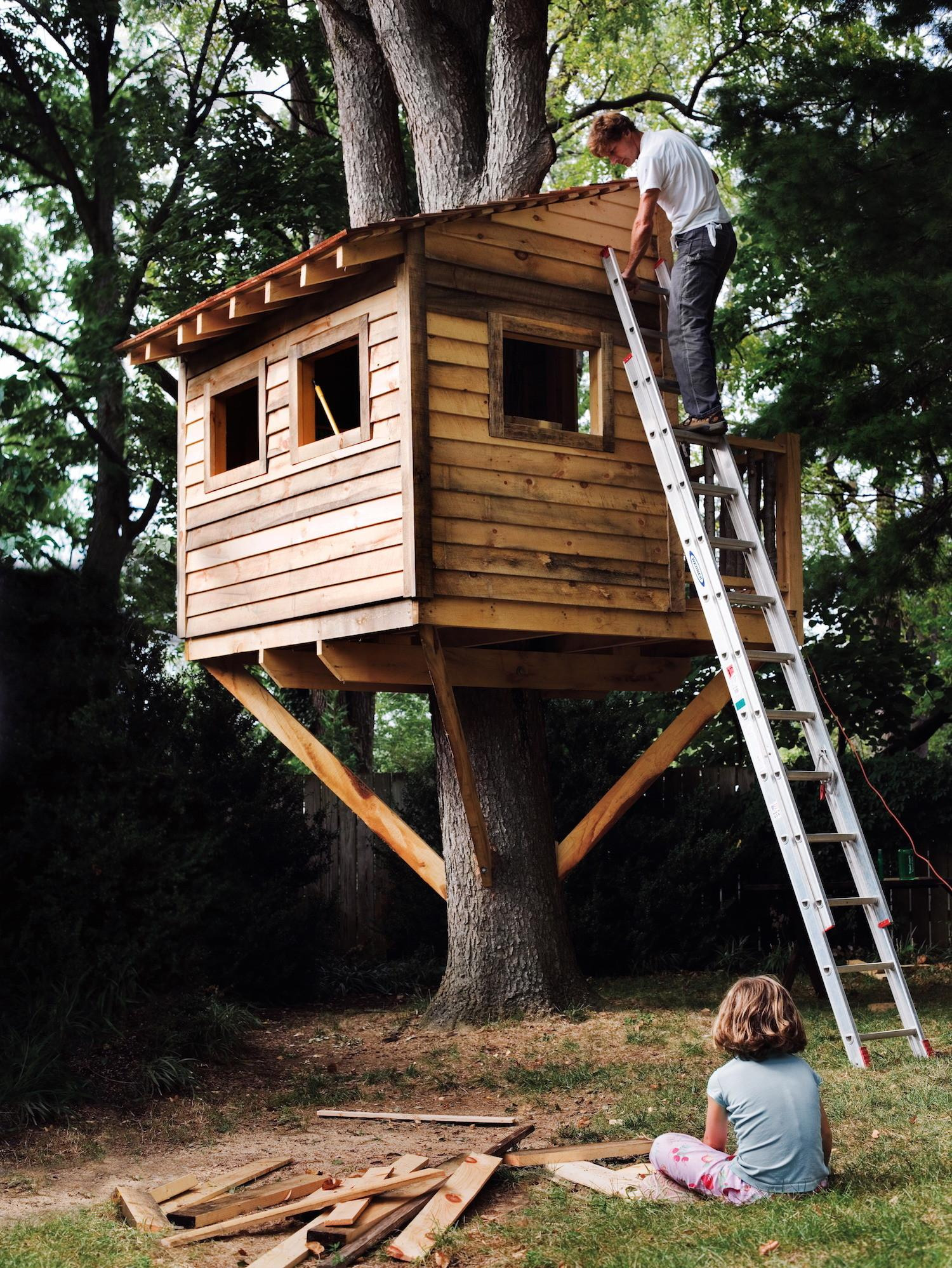 build treehouse your backyard diy tree