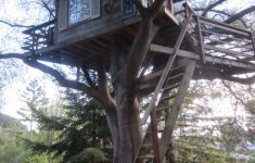 Tree House Plans For Sale Lovely San Francisco Treehouse