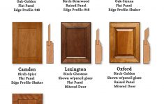 Types Of Kitchen Cabinet Doors Awesome Door Styles Koch