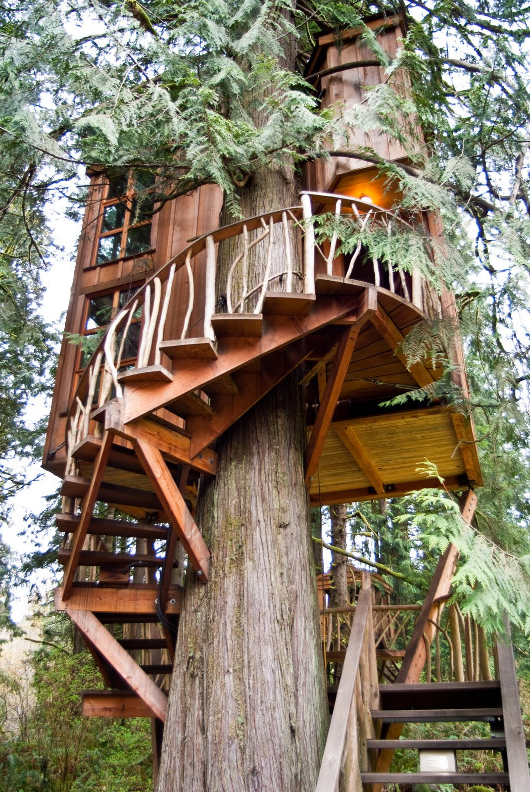 Greatest Houses In the World Inspirational 20 the Greatest Tree Houses In the World – Woodenwatchesclub