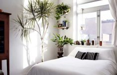 Minimalist Small Bedroom Design Awesome Adorable 40 Cozy Minimalist Bedroom Designs S