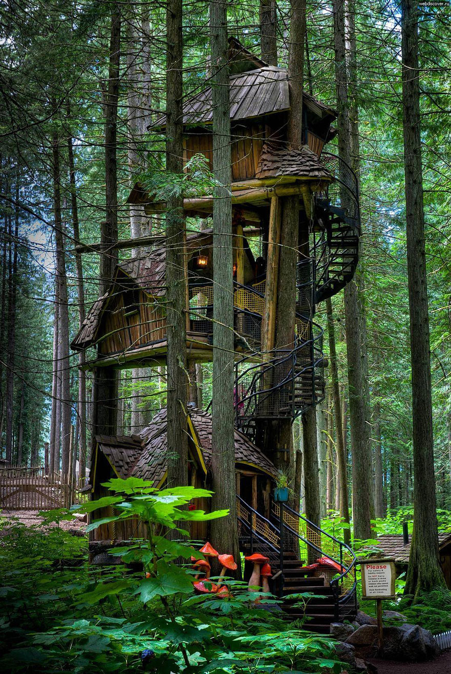 Worlds Most Beautiful House New 17 Of the Most Amazing Treehouses From Around the World