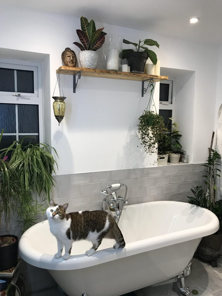 Jungle Bathroom Decor 2020
