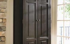 Narrow Cabinets With Doors Beautiful Functional Tall Cabinet With Doors