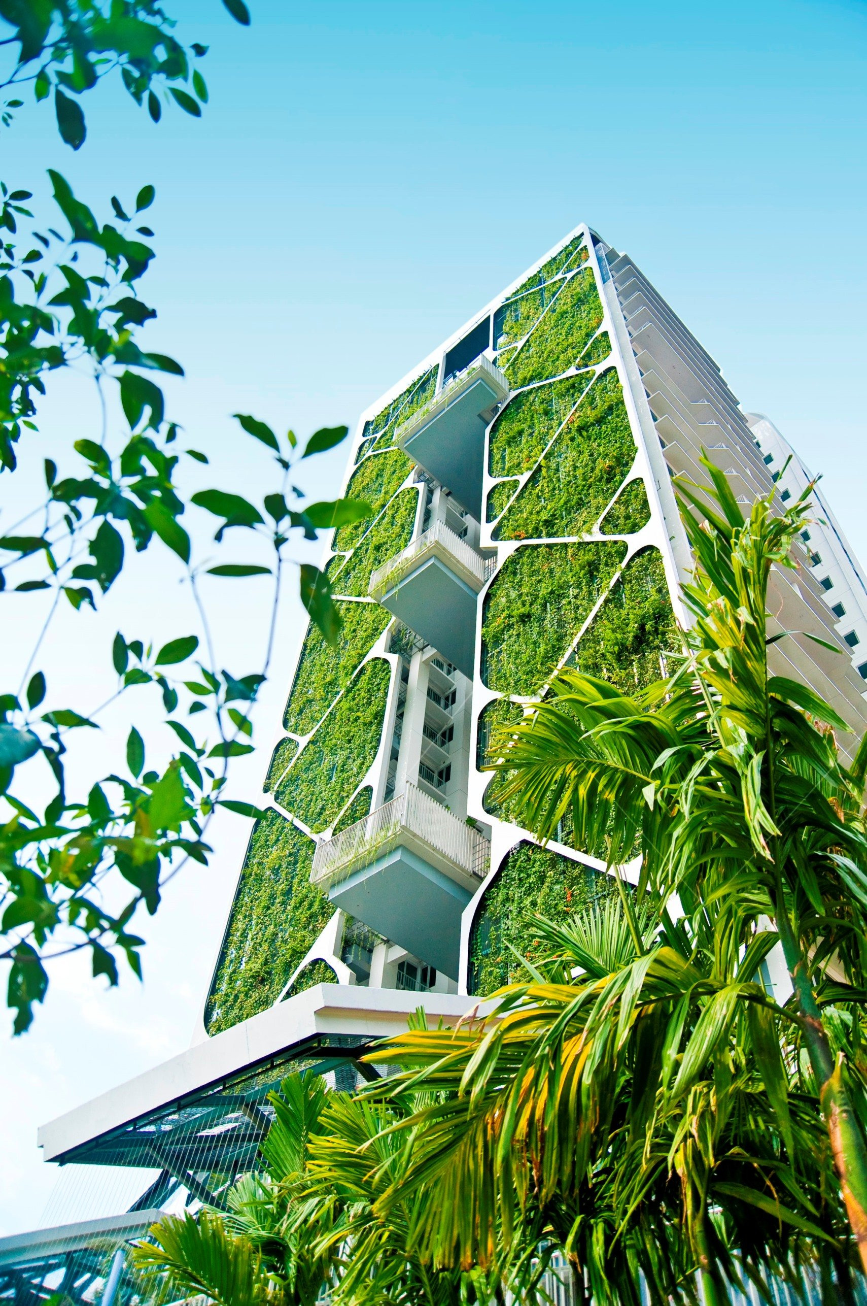 The Most Amazing Houses Beautiful Green Streets How Plantlife is Inspiring Modern