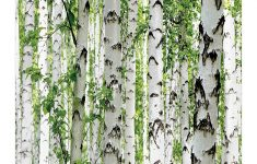 Wildlife Bathroom Decor Unique Ambesonne Woodland Stall Shower Curtain Birch Trees In The Forest Summertime Wildlife Nature Outdoors Themed Picture Fabric Bathroom Decor Set With