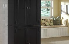 Wooden Storage Cabinets With Doors Inspirational Ikea Wooden Storage Cabinets Garage With Doors Home Elements