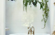 Decorative Bathroom Faucets Unique 30 Perfect And Beautiful Hanging Bath Plant Decor Ideas